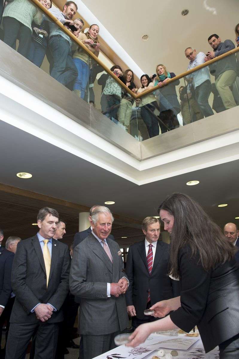 HRH The Prince of Wales on his visit to the Marine Institute where he met Dr. Peter Heffernan CEO Marine Institute and  An Taoiseach Enda Kenny TD and while Dr. Margaret Rae, Marine Institute explains the marine biodiscovery research. Photo: Andrews Downes XPOSURE.