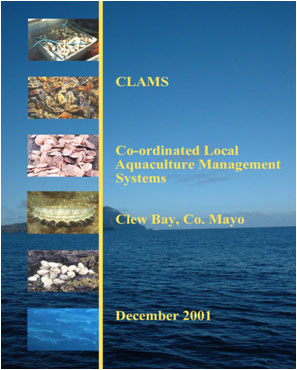 Cover photo of CLAMS document