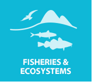 Fisheries & Ecosystems
