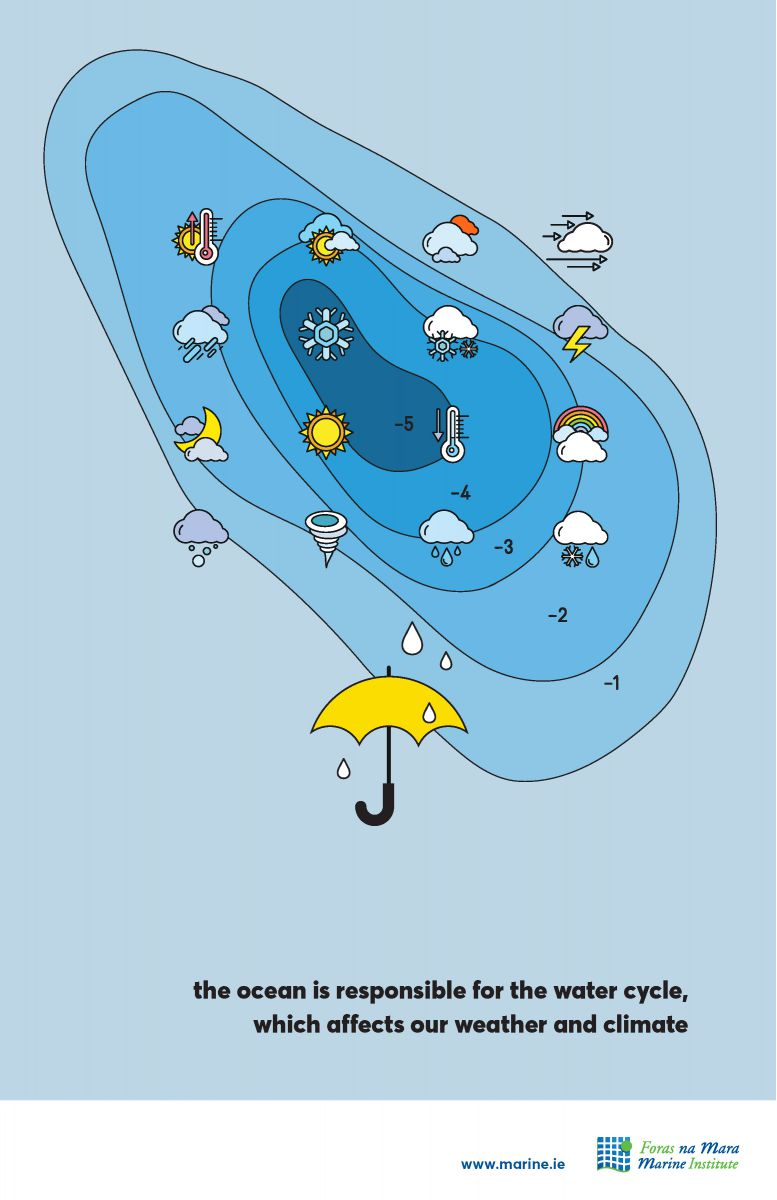 Water Cycle Marine Fact