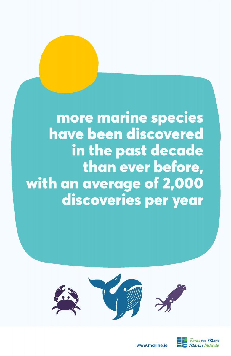 Marine species marine fact