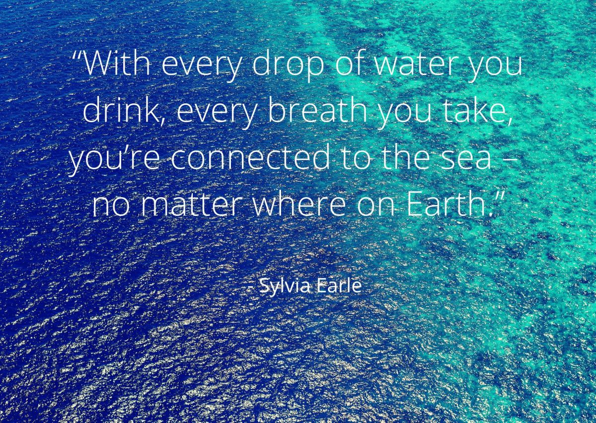 Quote by Sylvia Earle