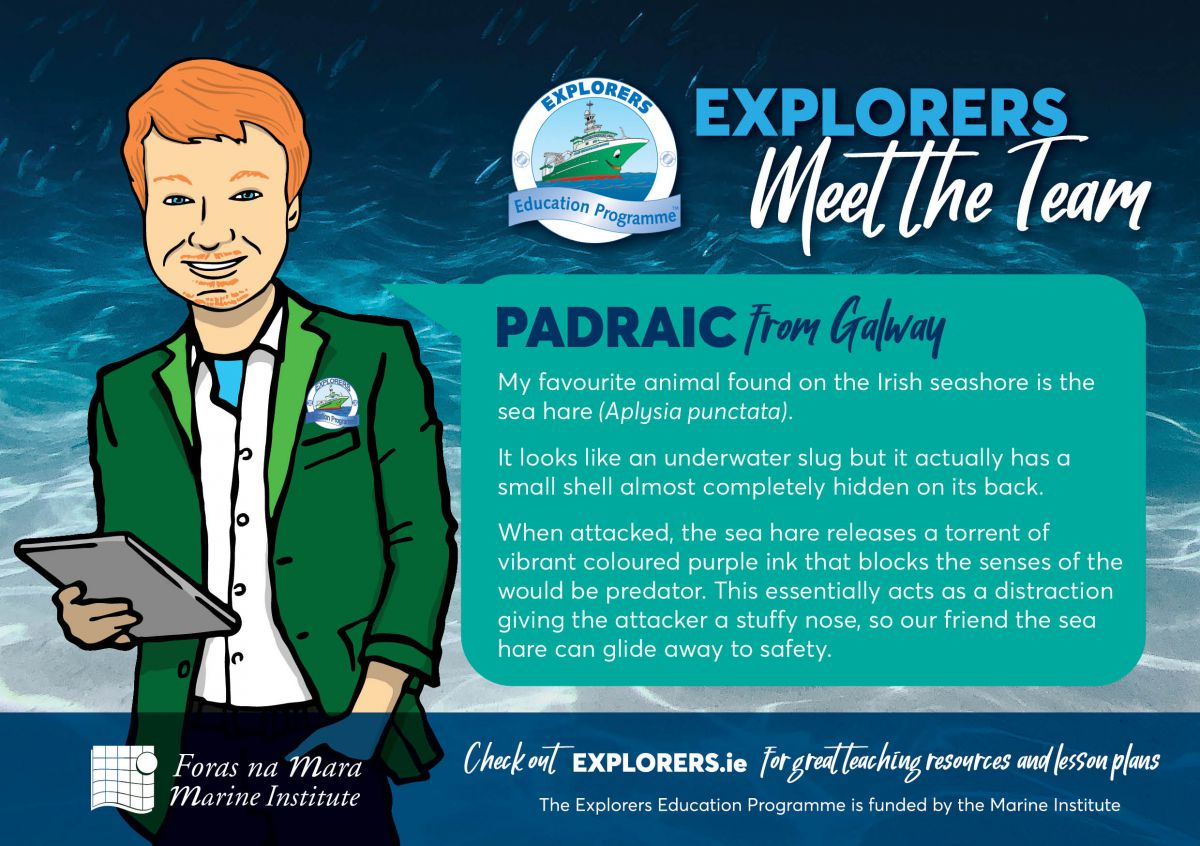 Padraic - The ocean supports a great diversity of Life and Ecosystems