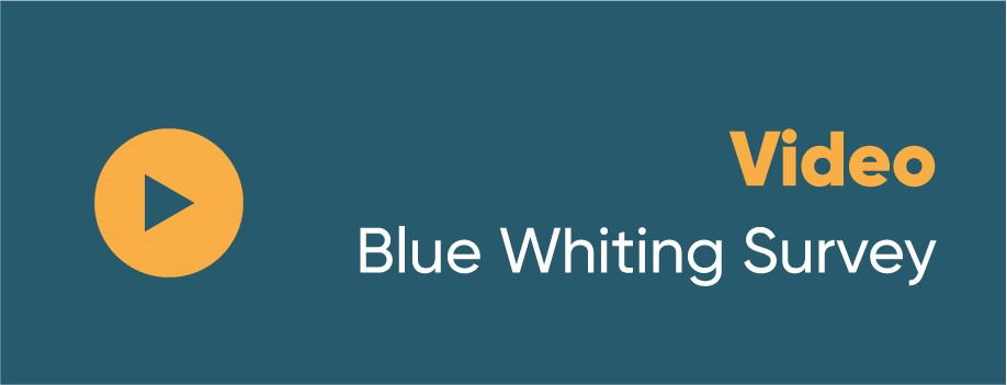 Video - Blue Whiting Survey