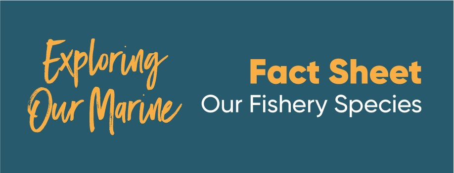 Exploring Our Marine - Fishery Species