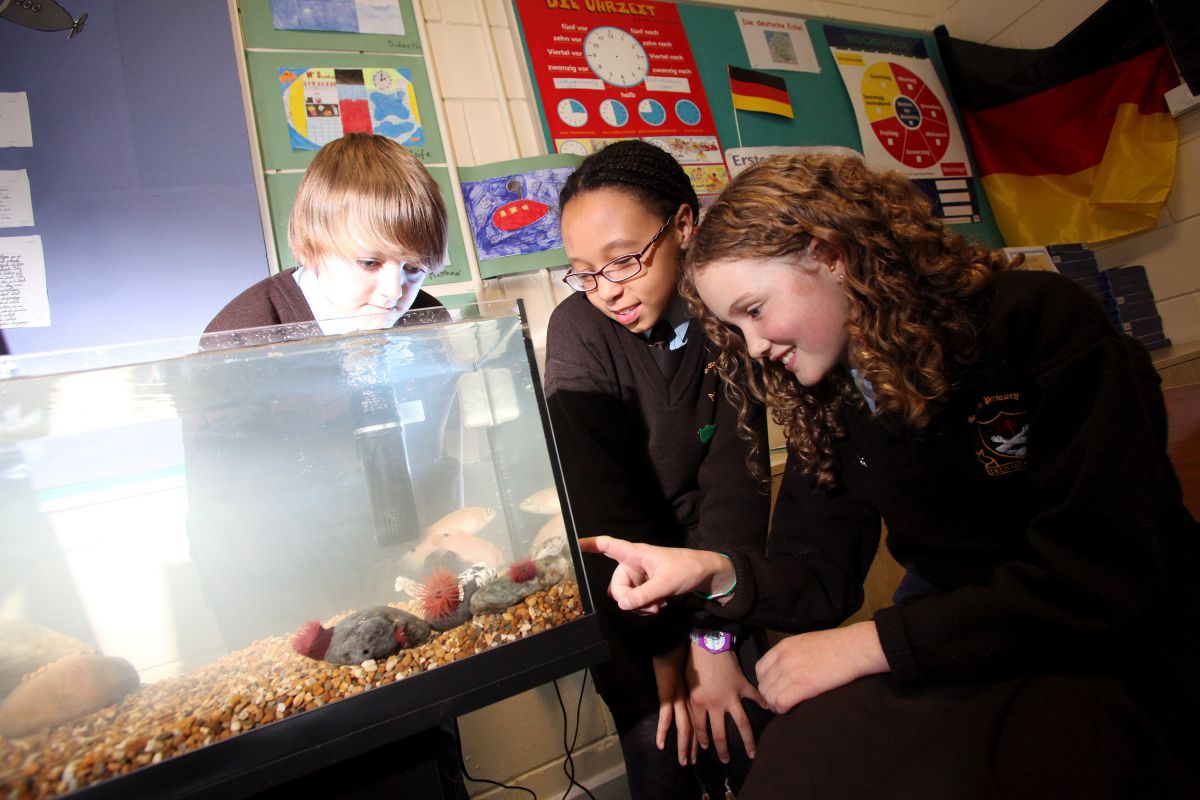 Explorers Aquarium in Class. Photographer Jason Clarke photography.