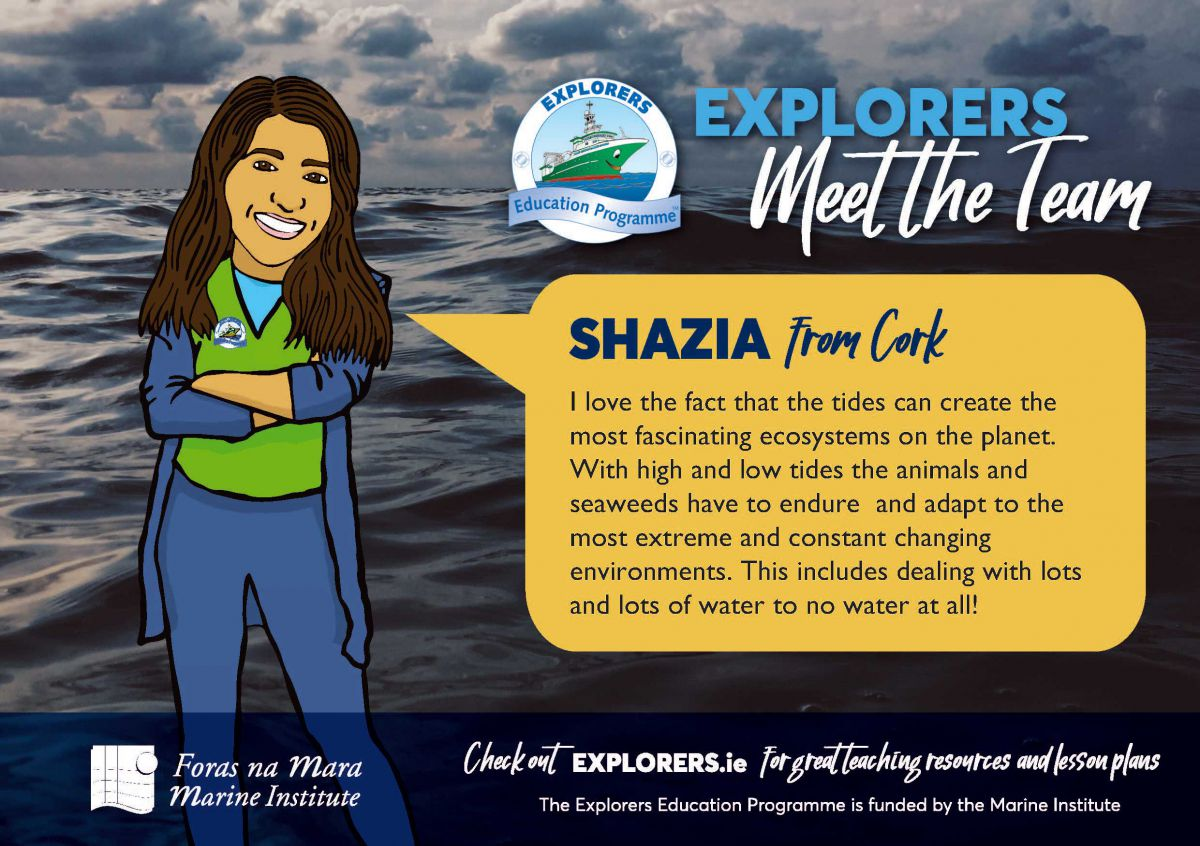 Shazia - The ocean supports a great diversity of Life and Ecosystems