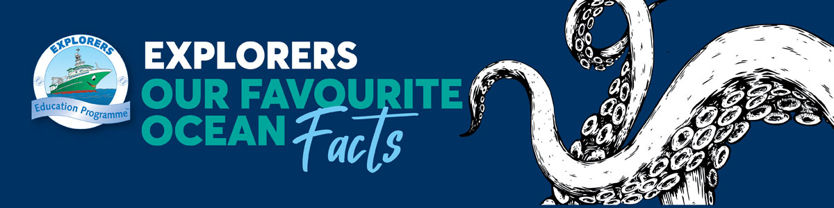 Explorers Favourite Ocean Facts and Activities