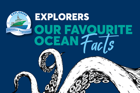 Our Favourite Ocean Facts