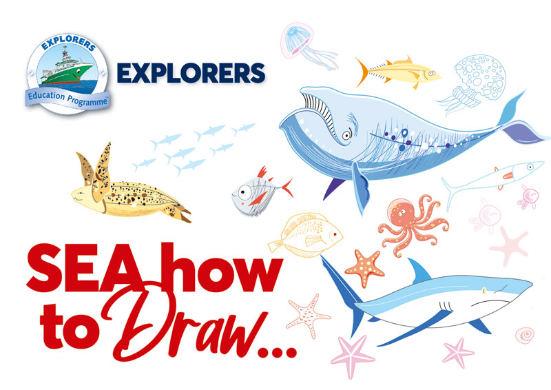 SEA How to Draw  image
