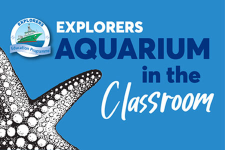Explorers Aquarium in Class.