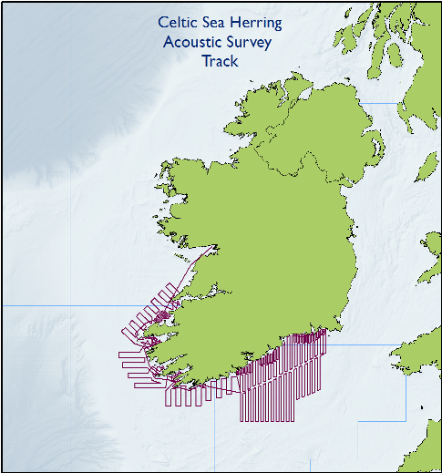 Map showing Celtic Sea Herring Acoustic survey Tracks
