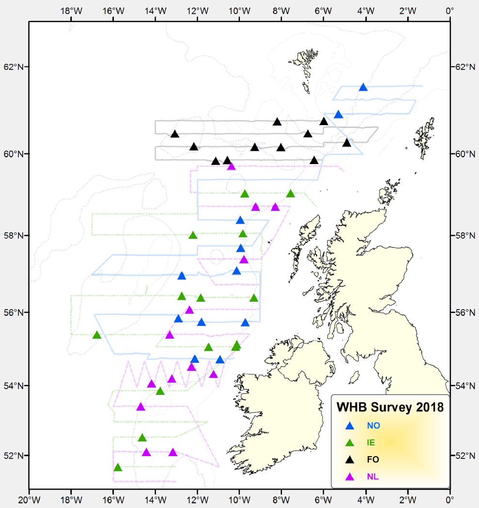 Combined cruise tracks of all vessels involved in blue whiting surveys