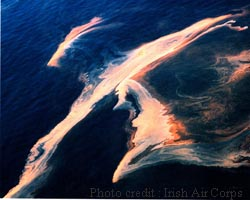 Photo of redtide credit: Irish Air Corps
