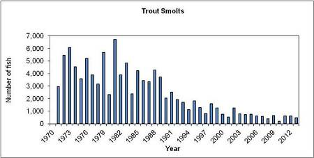 Trout smolts since 1971 at Marine Institute, Newport