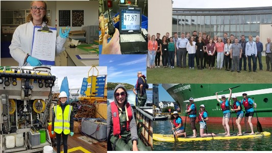 Students are invited to apply for the Marine Institute's Bursary Programme