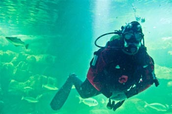 Diver in tank