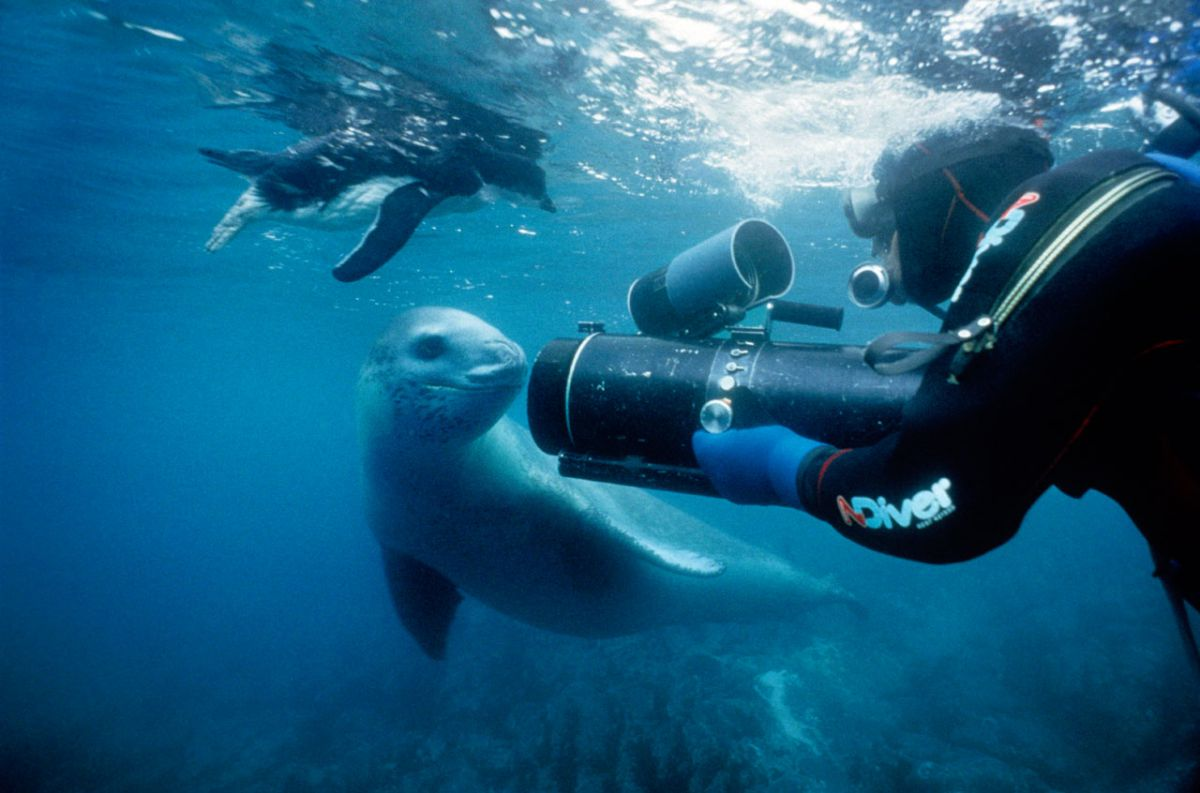 Doug and a Leopard Seal.