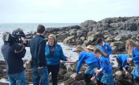 Loophead Summer Hedge School runs a number of seashore safari's in County Clare
