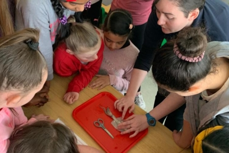 Eimear Manning from Global Action Plan Ireland, dissects a squid with primary students from Virgin Mary GNS, Ballymun, Dublin. Eimear is sharing her love for the ocean by delivering the Marine Institute's Explorers Education marine project module for the first time on Valentine's Day.