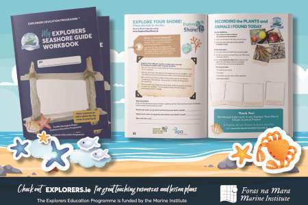 My Explorers Seashore Guide Work Book published on International biological diversity day
