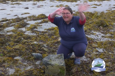 Dr Noirin Burke explains the life of a common barnacle during the filming of the Explorers Wild about Wildlife on the Seashore series. Photo. Cushla Dromgool-Regan