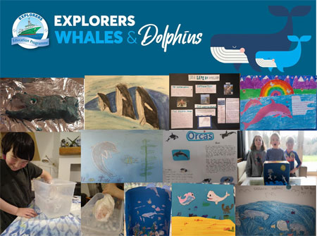 In February, 70 primary school children, teachers and parents learnt about whales and dolphins through the Marine Institute's Explorers Education Programme.