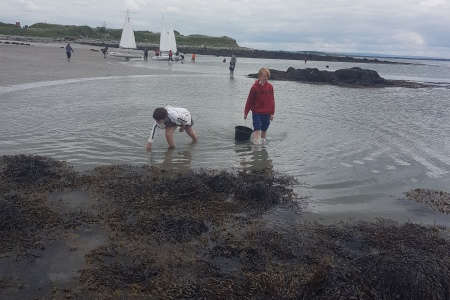 Galway Sailing Club teach students about marine science and sailing