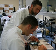 Bursary Students getting experinece in a lab