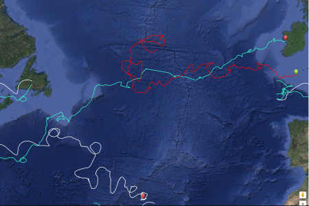 Follow the Lancer's position - the red line is the sailboat's current position 28th July 2017.