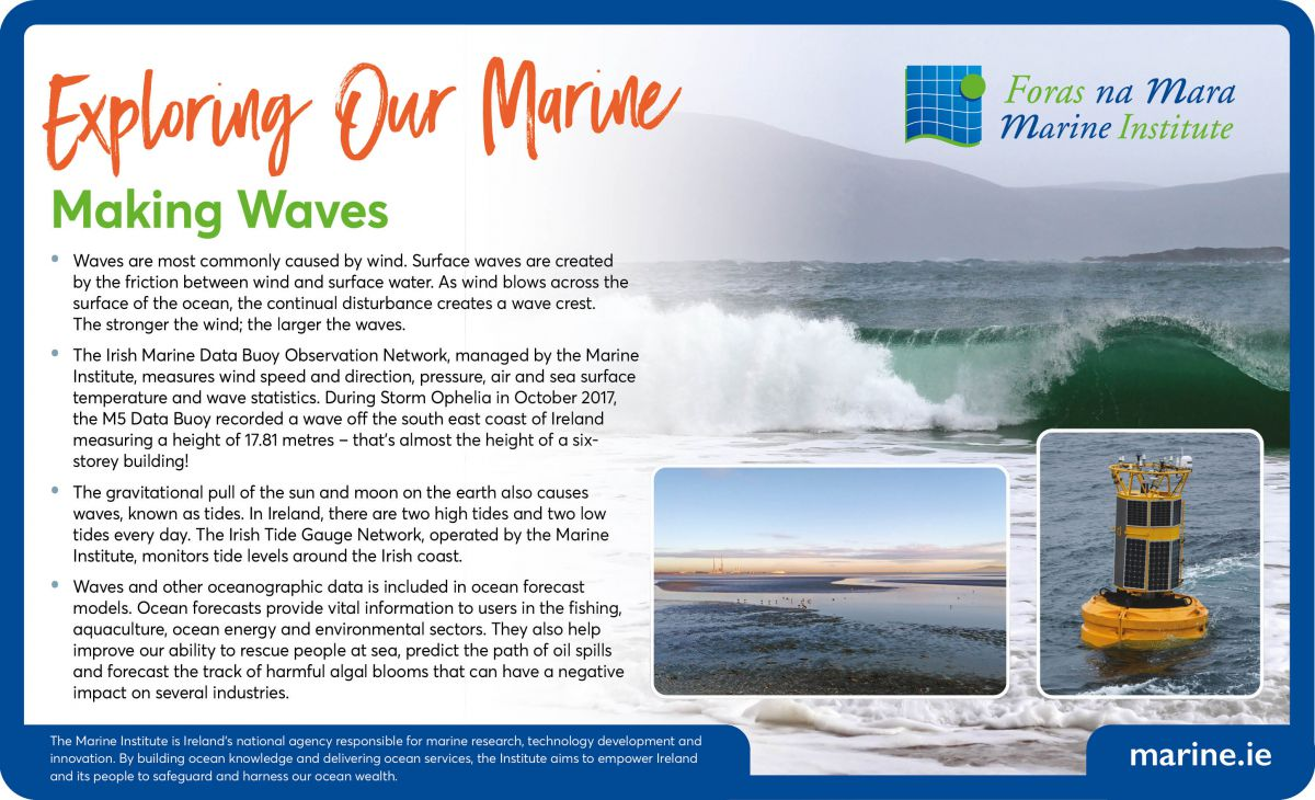 Exploring Our Marine - Making Waves