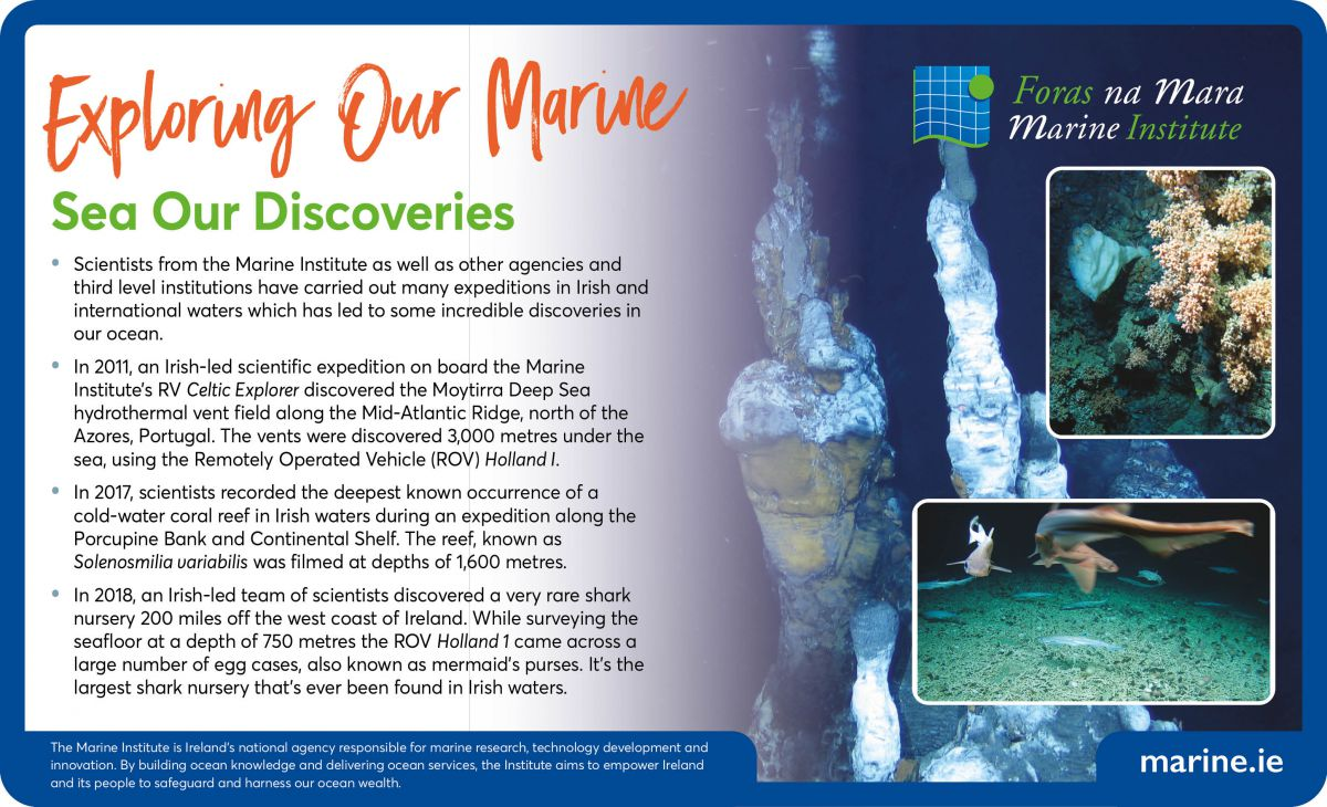 Exploring Our Marine - Sea Our Discoveries