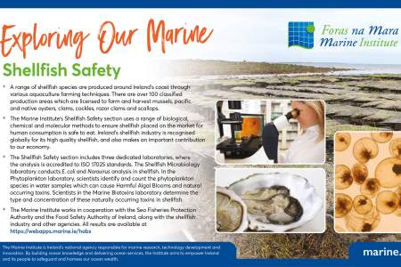 Exploring Our Marine - Shellfish safety