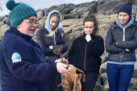 Dr Noirin Burke from the Explorers Education Programme introduces up to 50 fourth year pre-service teachers from Mary Immaculate College to teaching children about the wonders of the seashore on Grattan beach in Galway. Photo Anne Dolan.