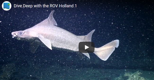Dive Deep with the ROV Holland 1 on RTE Learn