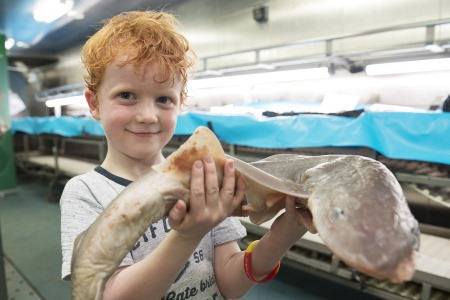 Elliot Irwin with Colm the Shark on Board the Celtic Explorer  at  SeaFest18. Photo: Andrew Downes, Xposure.
