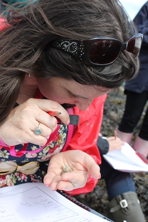 On Gratton beach, Caroline Burke of Scoil Mhuire, Clarinbridge uses seashore keys to identify species, as part of the Explorers Teacher Training Workshop 2015 run by the Marine Institute and Galway Atlantaquaria