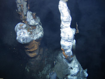 a discovery of hydrothermal vent A scientist directs the remote-operated underwater vehicle as it searches for egg cases near a hydrothermal vent (julye newlin/ocean exploration trust.