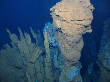Deepwater photograph from the mid-Atlantic Ridge