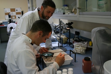 Bursary Students getting experience in a lab