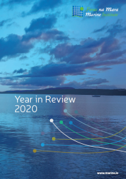 Marine Institute Year in Review 2020