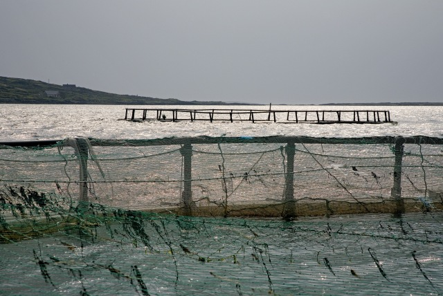 Aquaculture.Photographer David Branigan