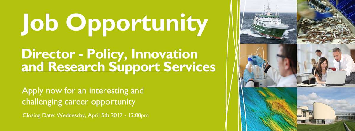 Director – Policy, Innovation and Research Support Services