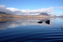 Lough Feeagh, Newport, Co. Mayo, Ireland. Photo Credit Mary Dillane, Marine Institute