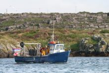 Fishing Boat. Photo courtesy of the Marine Institute.