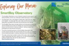 Smartbay Observatory infographic